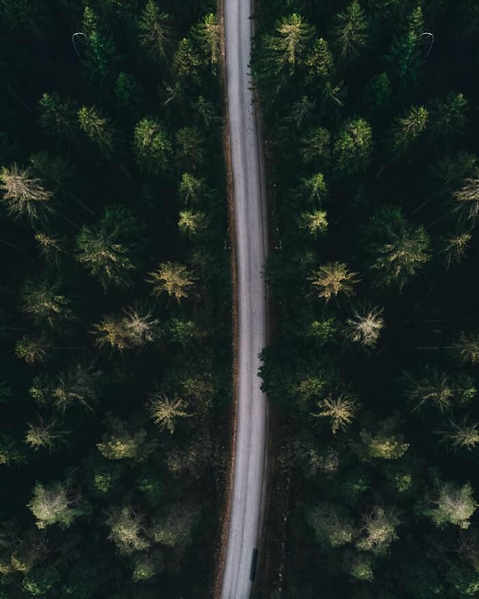 Miljöarbete svenska vägar