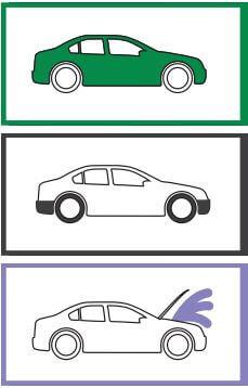 Polera bilen som ett proffs